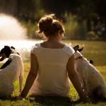 A los perros les afecta la hormona del amor?