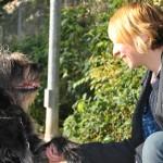 Consigue el respeto de tu perro en 10 simples pasos