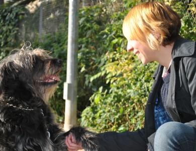 10 pasos para ganarte el respeto de tu perro