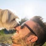 7 razones por las que tu perro te quiere lamer