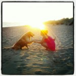 ¿Qué aporta un perro a la familia? Averígualo