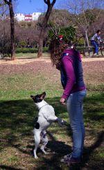 alumna adiestrando a su perro